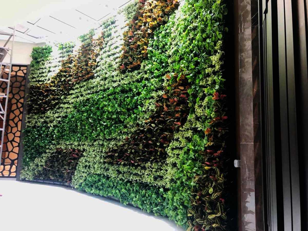 Breite Pflanzenwand