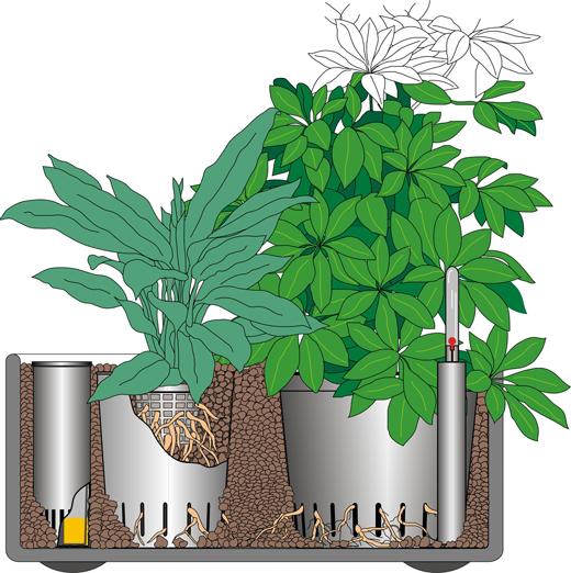 Hydrokultur System