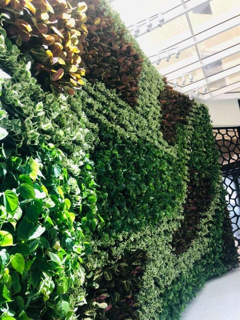 Pflanzenwand mehrfarbig