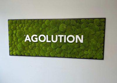 Moosbild Agolution