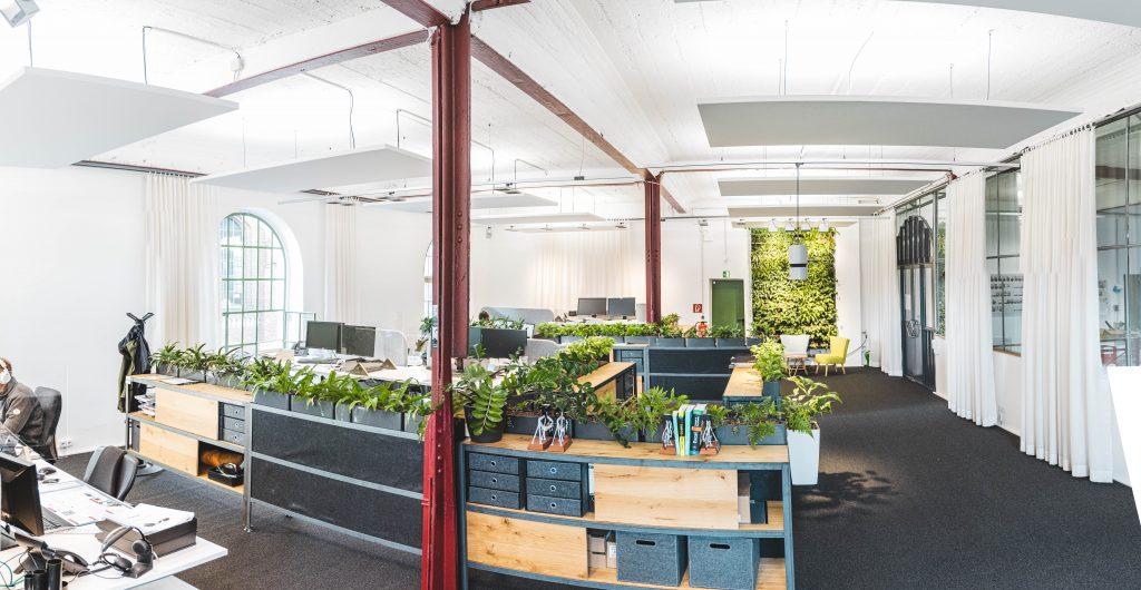 Büropflanzen in Tischgefäßen
