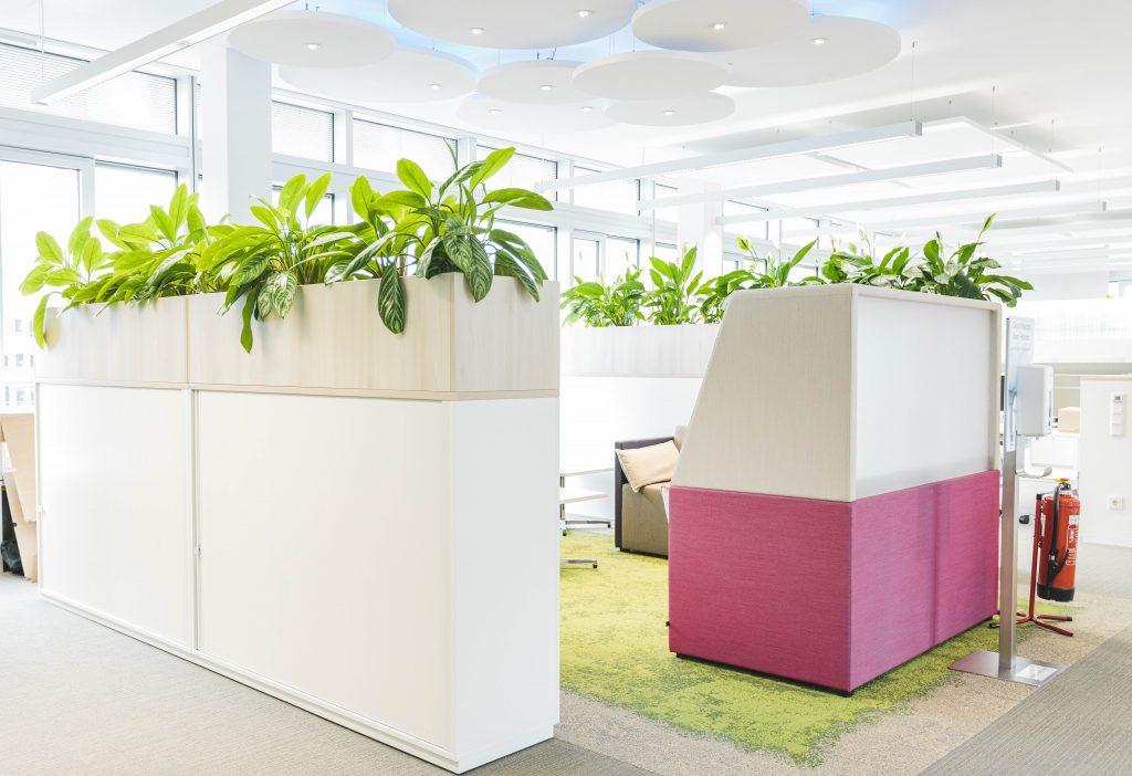 bepflanzte Raumtrenner im Büro